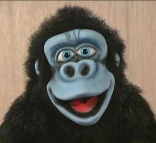 Gorilla Puppet Show in Kuwait