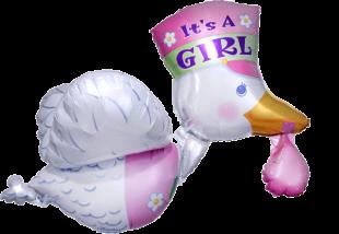 Buy It's A Girl Albatros in Kuwait