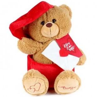 Buy Mail Man Teddy in Kuwait
