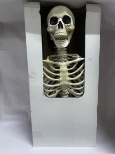 Standing Skeleton Eyes - Lightup in Kuwait