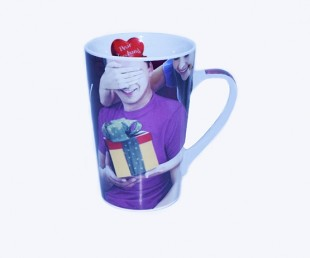 Buy Surprise Husband Mug in Kuwait